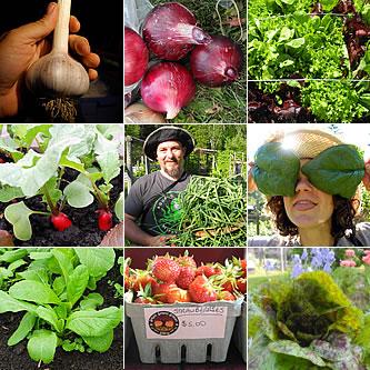 Farm Fresh Local Fernie Produce