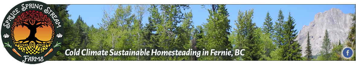 Spruce Spring Stream Farms, Fernie, BC