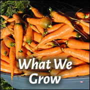 What We Grow